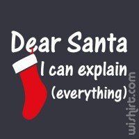 T-shirt Dear Santa... I can explain